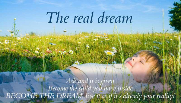 Dream & Reality Quotes