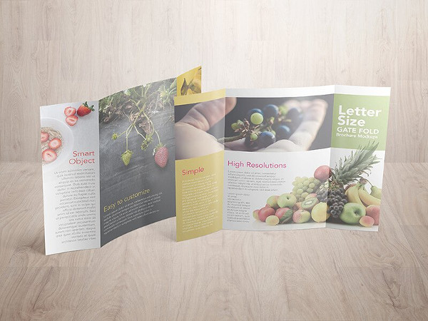 Brochure Mockup Templates  Free  Premium Download