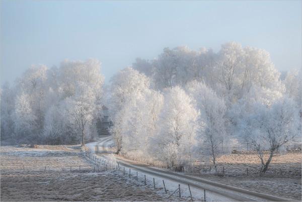 Cold Landscape Photography