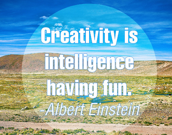 Creativity is Intilligence having Fun