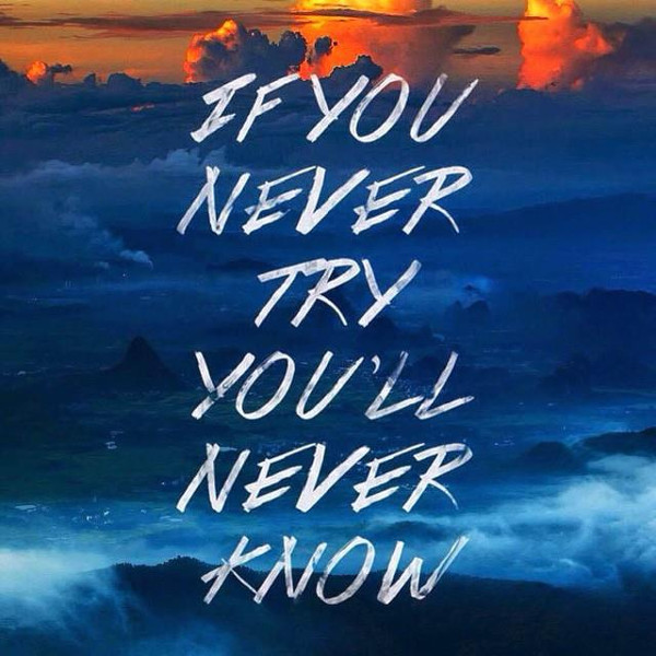 If You Never Try you,ll Never Know