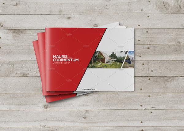 Yeallow Modern Brochure