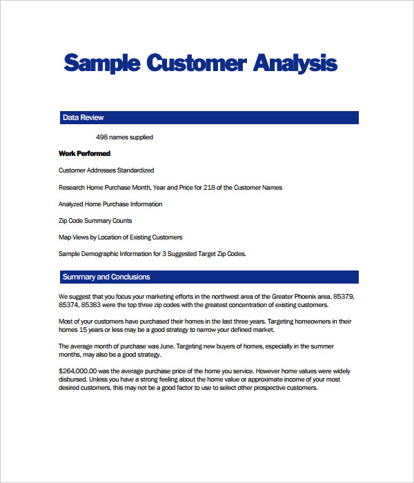 Customer Analysis Template
