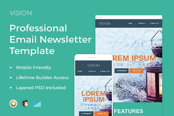 Professional Email Newsletter Template